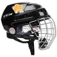 Hockey Helmet Decals Thumbnail